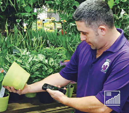 Image shows a frontline worker using Webalo on a mobile phone to scan a barcode on the bottom of a plant in a greenhouse.